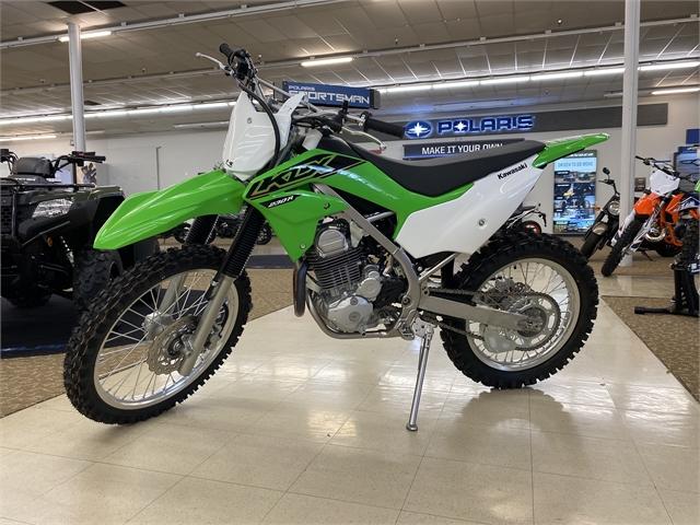 2021 Kawasaki KLX 230R at Columbia Powersports Supercenter