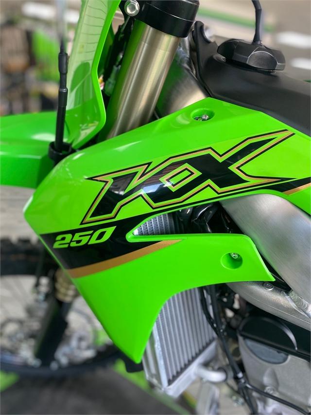 2022 Kawasaki KX 250 at Jacksonville Powersports, Jacksonville, FL 32225