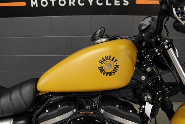 2019 Harley-Davidson Sportster Iron 883 at Harley-Davidson of Indianapolis