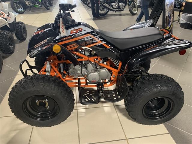 2020 Kayo STORM 150 at Star City Motor Sports