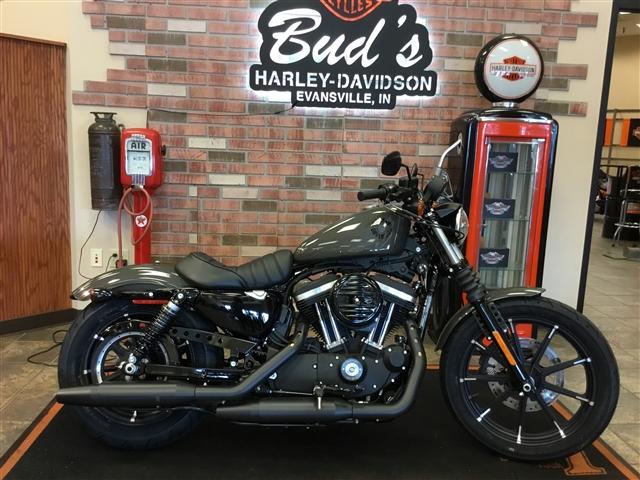 2019 Harley-Davidson Sportster XL883N at Bud's Harley-Davidson, Evansville, IN 47715