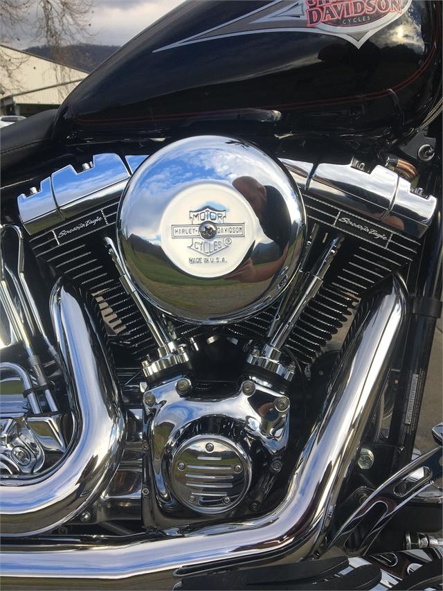 2001 Harley-Davidson FLSTC at Harley-Davidson of Asheville