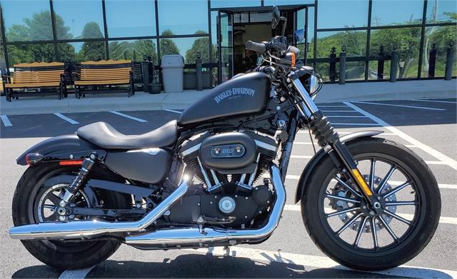 2015 Harley-Davidson Sportster Iron 883 at All American Harley-Davidson, Hughesville, MD 20637