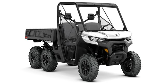 2021 Can-Am Defender 6X6 DPS HD10 at Riderz