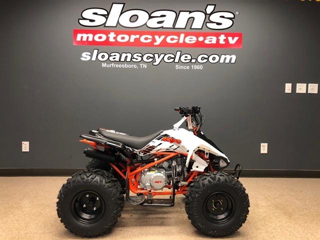 2021 Kayo PREDATOR 125 at Sloans Motorcycle ATV, Murfreesboro, TN, 37129