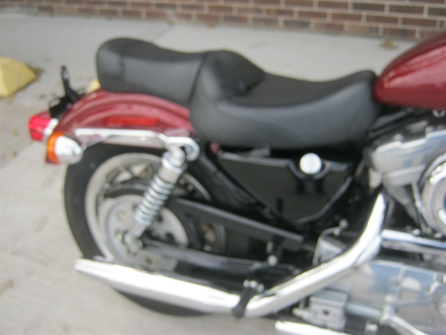 2001 Harley-Davidson XL883 Sportster at Brenny's Motorcycle Clinic, Bettendorf, IA 52722