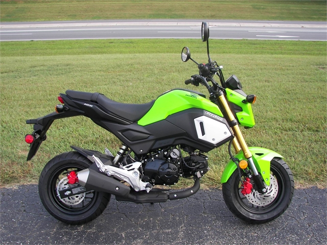2020 Honda Grom Base at Kent Motorsports, New Braunfels, TX 78130