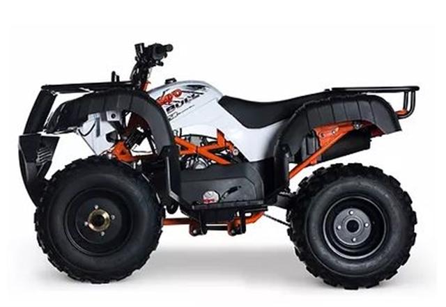 2020 KAYO AU150 at Got Gear Motorsports