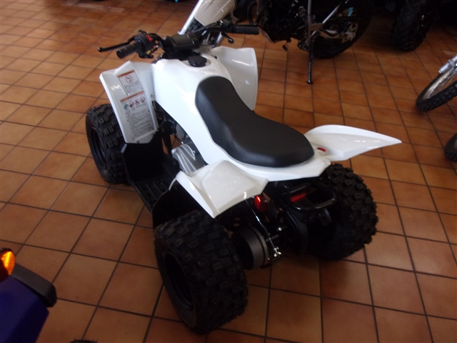2019 Yamaha YFZ 50 at Bobby J's Yamaha, Albuquerque, NM 87110