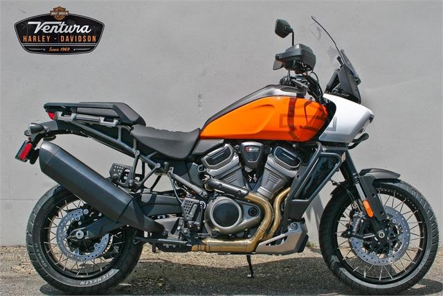 2021 Harley-Davidson Pan America Special at Ventura Harley-Davidson