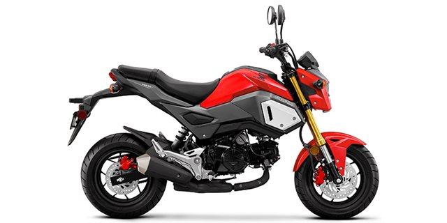 2019 Honda Grom Base at Ehlerding Motorsports