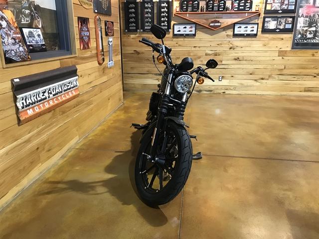 2019 Harley-Davidson Sportster Iron 883 at Thunder Road Harley-Davidson