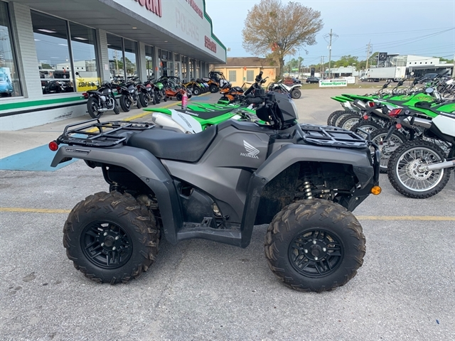 2019 Honda FourTrax Foreman Rubicon 4x4 Automatic DCT EPS Deluxe at Jacksonville Powersports, Jacksonville, FL 32225