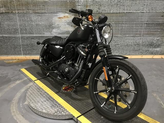 2020 Harley-Davidson Sportster Iron 883 at Texarkana Harley-Davidson