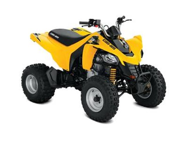 2019 Can-Am DS 250 at Seminole PowerSports North, Eustis, FL 32726