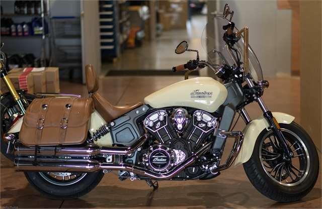 2017 Indian Scout Base at Indian Motorcycle of Northern Kentucky