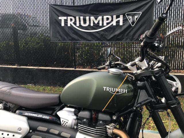 2019 TRIUMPH SCRAMBLER 1200 XC SCRAMBLER 1200 XC at Tampa Triumph, Tampa, FL 33614