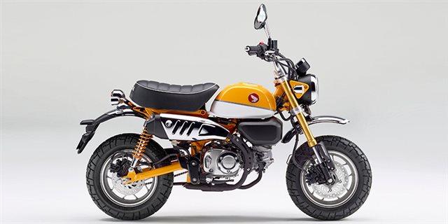2019 Honda Monkey Base at Sloans Motorcycle ATV, Murfreesboro, TN, 37129