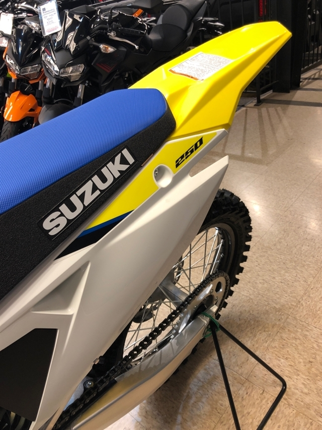 2020 Suzuki RM-Z 250 250 at Sloans Motorcycle ATV, Murfreesboro, TN, 37129