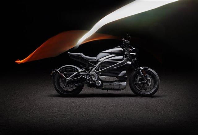 2020 Harley-Davidson Electric LiveWire at Garden State Harley-Davidson