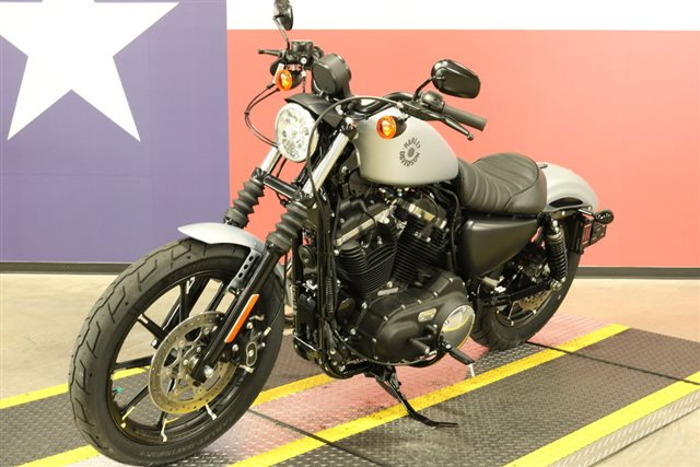 2020 Harley-Davidson XL883N - Sportster Iron 883 at Texas Harley