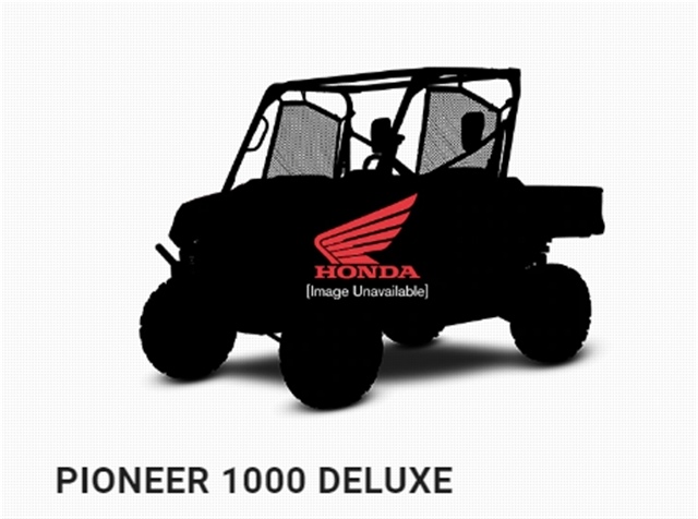 2020 Honda Pioneer 1000 Base at Van's Motorsports