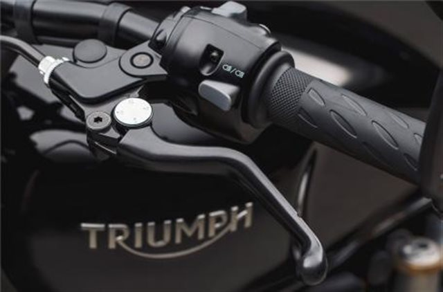 2019 Triumph Bonneville Bobber Black Black at Frontline Eurosports