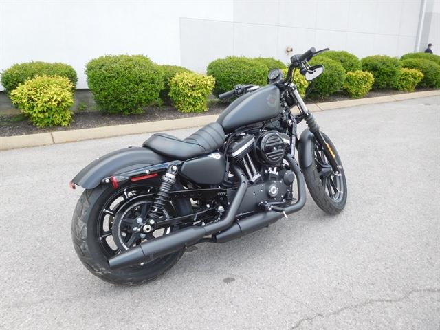 2019 Harley-Davidson Sportster Iron 883 at Bumpus H-D of Murfreesboro