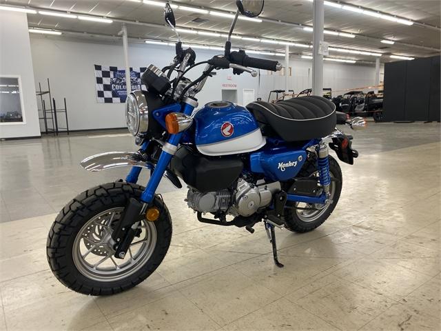2021 Honda Monkey Base at Columbia Powersports Supercenter
