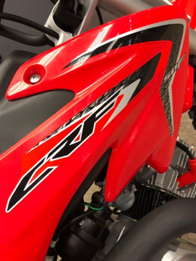 2019 Honda CRF 50F at Sloan's Motorcycle, Murfreesboro, TN, 37129