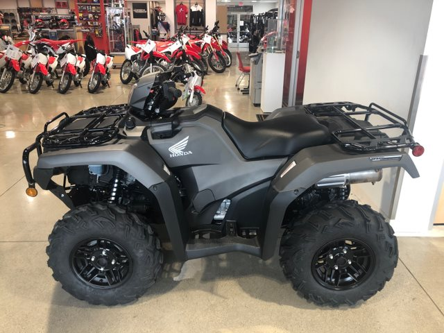 2019 Honda FourTrax Rubicon DLX Automatic at Genthe Honda Powersports, Southgate, MI 48195