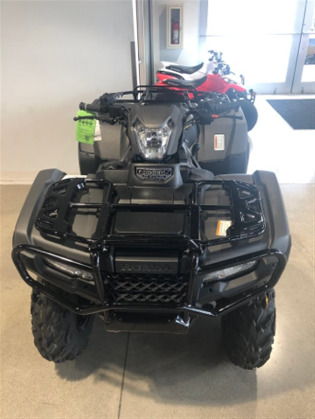 2019 Honda FourTrax Rubicon DLX Automatic at Genthe Honda Powersports, Southgate, MI 48195