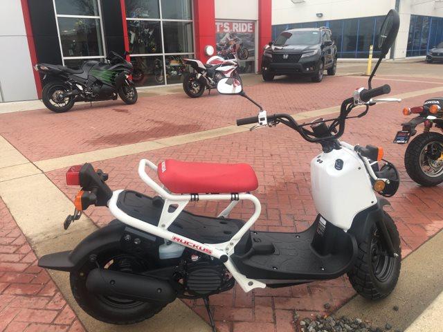 2019 Honda Ruckus Base at Genthe Honda Powersports, Southgate, MI 48195