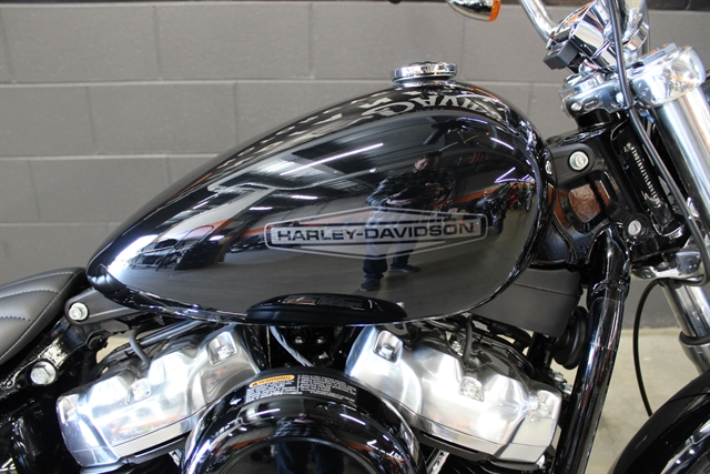 2020 Harley-Davidson Softail Standard at Harley-Davidson of Indianapolis