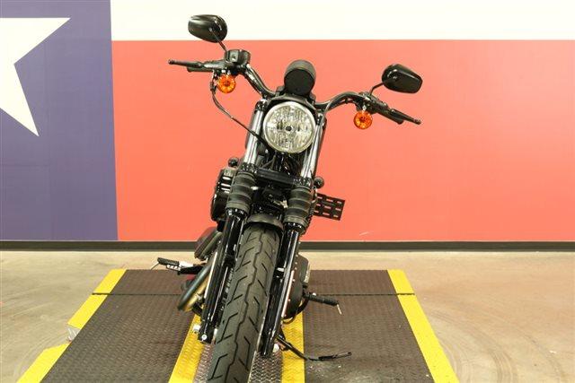 2020 Harley-Davidson XL883N - Sportster Iron 883 at Texas Harley