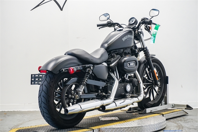 2015 Harley-Davidson Sportster Iron 883 at Texoma Harley-Davidson