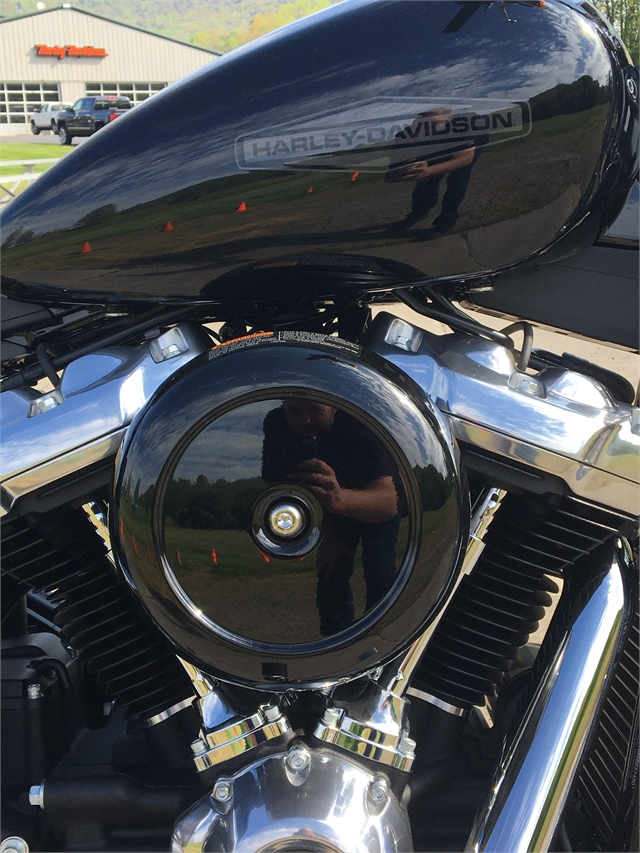 2021 Harley-Davidson Cruiser FXST Softail Standard at Harley-Davidson of Asheville