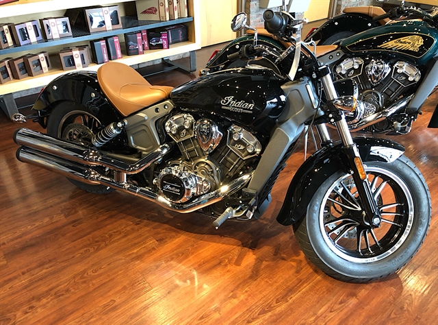 2019 Indian Scout Base at Indian Motorcycle of Northern Kentucky