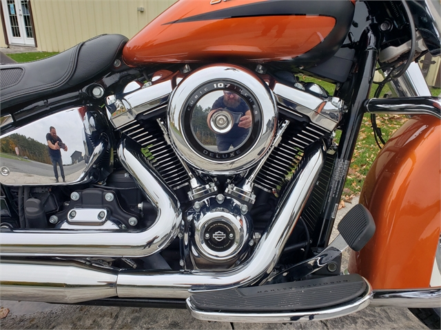 2019 Harley-Davidson Softail Deluxe at Classy Chassis & Cycles