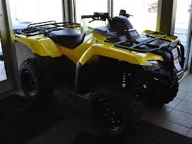 2018 Honda FourTrax Rancher 4X4 Automatic DCT IRS EPS at Kent Powersports of Austin, Kyle, TX 78640