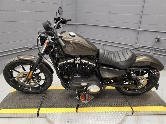 2020 Harley-Davidson Sportster Iron 883 at Big Sky Harley-Davidson