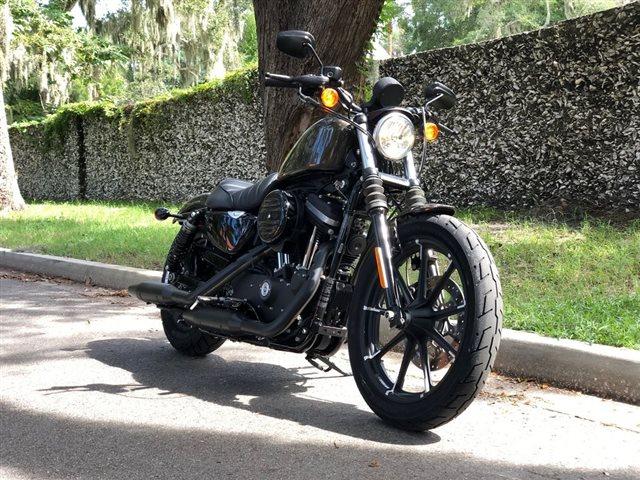 2020 Harley-Davidson XL883N - Sportster Iron 883 Iron 883 at Powersports St. Augustine