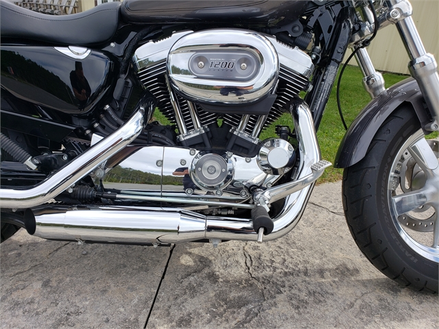 2016 Harley-Davidson Sportster 1200 Custom 1200 Custom at Classy Chassis & Cycles