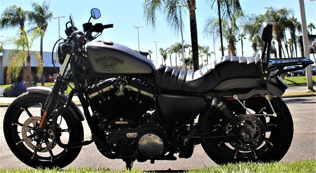 2017 Harley-Davidson Sportster Iron 883 at Quaid Harley-Davidson, Loma Linda, CA 92354