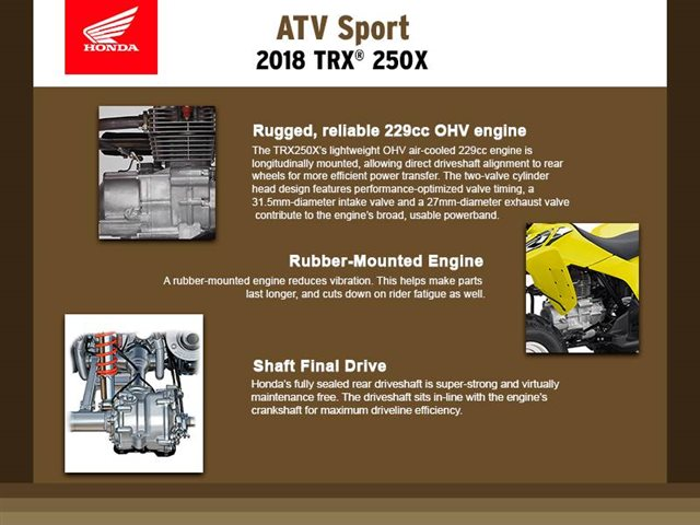2018 Honda TRX 250X at Seminole PowerSports North, Eustis, FL 32726