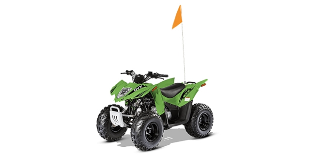 2017 Arctic Cat 90 DVX at Lincoln Power Sports, Moscow Mills, MO 63362