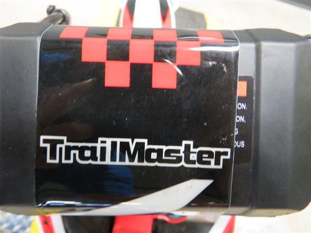 2021 TRAILMASTER TM110110S at Sky Powersports Port Richey