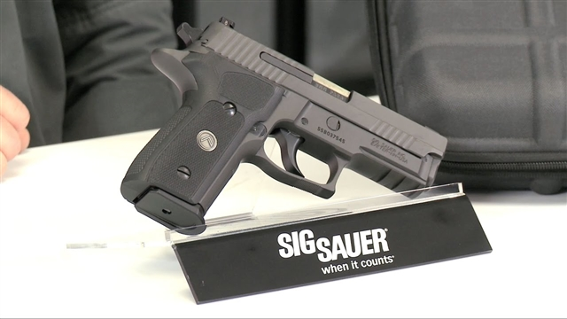 2018 Sig Sauer P229 at Harsh Outdoors, Eaton, CO 80615