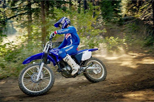 2019 Yamaha TT-R 230 at Wild West Motoplex