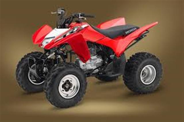 2018 Honda TRX250X 250X at Genthe Honda Powersports, Southgate, MI 48195